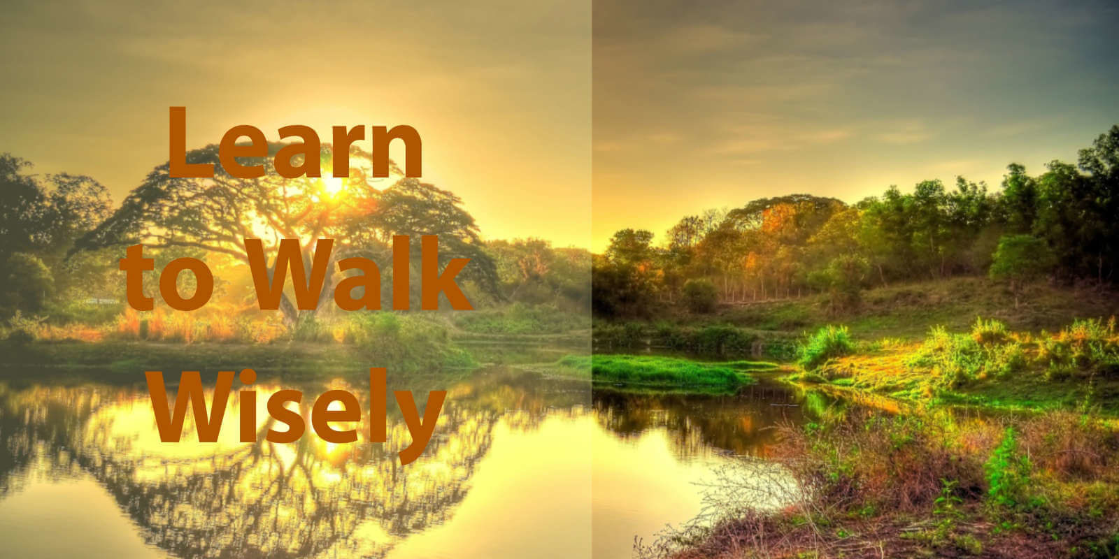 Learn to Walk Wisely