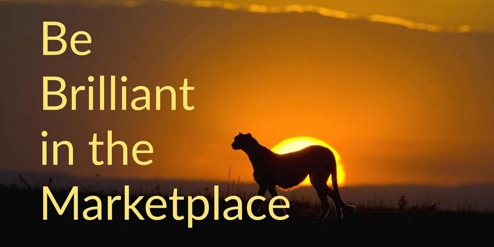 Be Brilliant in the Marketplace